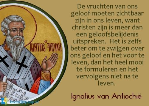 tekst ignatius van antiochie.jpg
