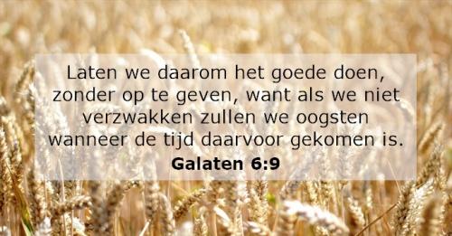 tekst bijbeltekst Galaten.jpg