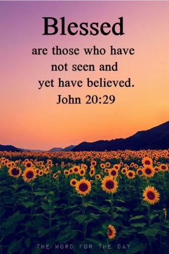 tekst bijbel John.jpg