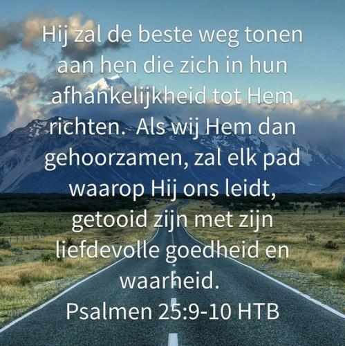 tekst bijbel psalm 25 nederl.jpg