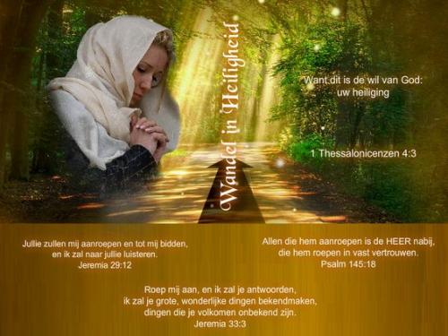 tekst bijbel3.jpg