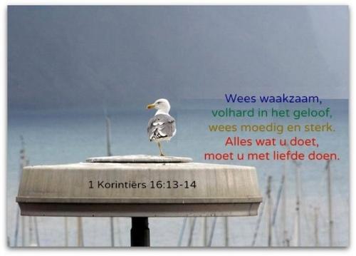 tekst bijbel21.jpg