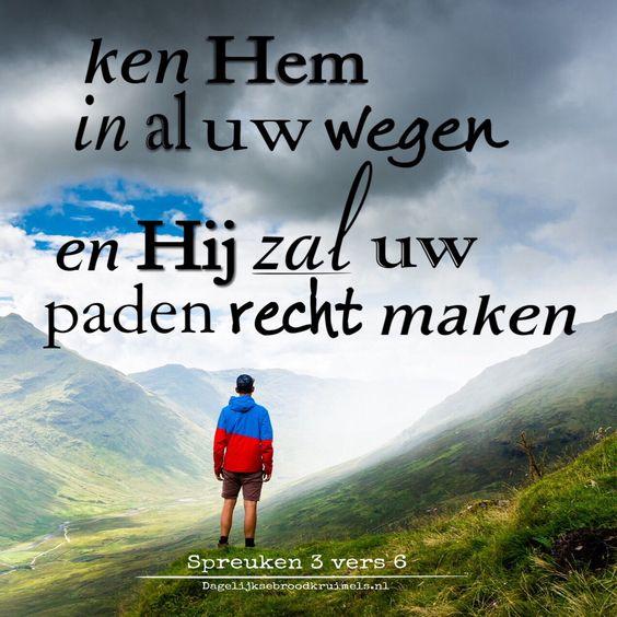 tekst bijbel spreuken nederlands32