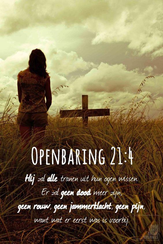 tekst bijbel openbaring44